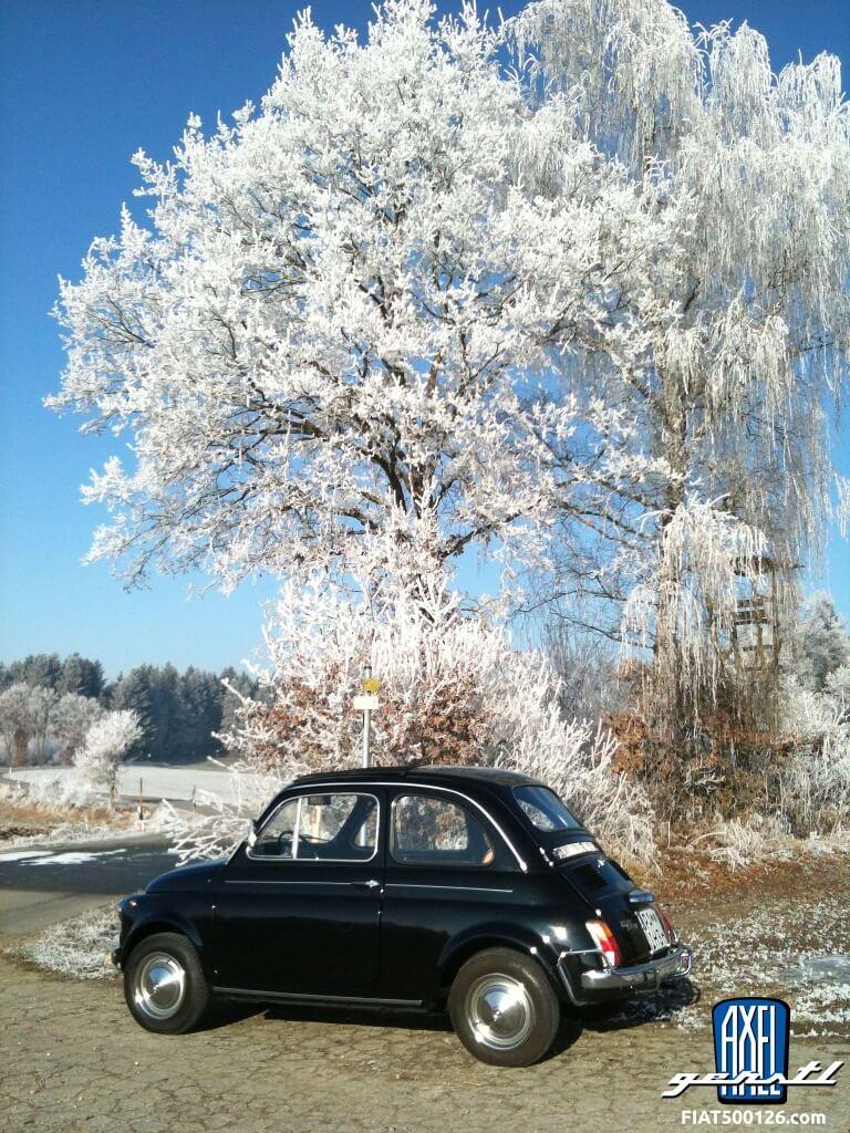 Fiat des Monats Januar 2019