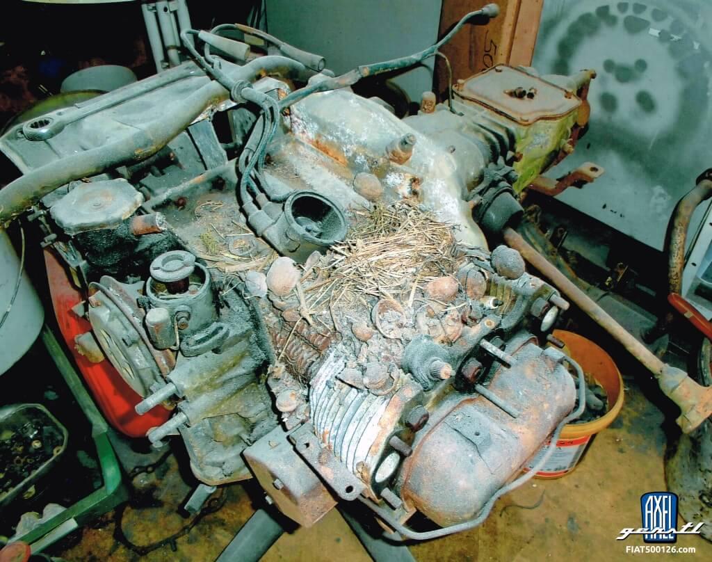 Giardiniera-Motor ist 'mausetot'