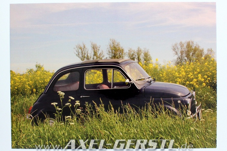 Postcard Fiat 500 on meadow (148 x 105 mm)
